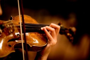 violin-new_0