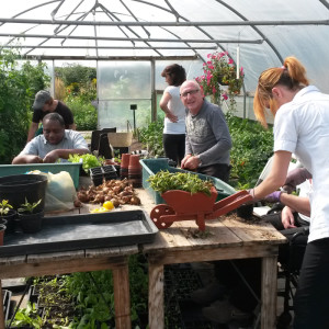 Community Garden for everyone